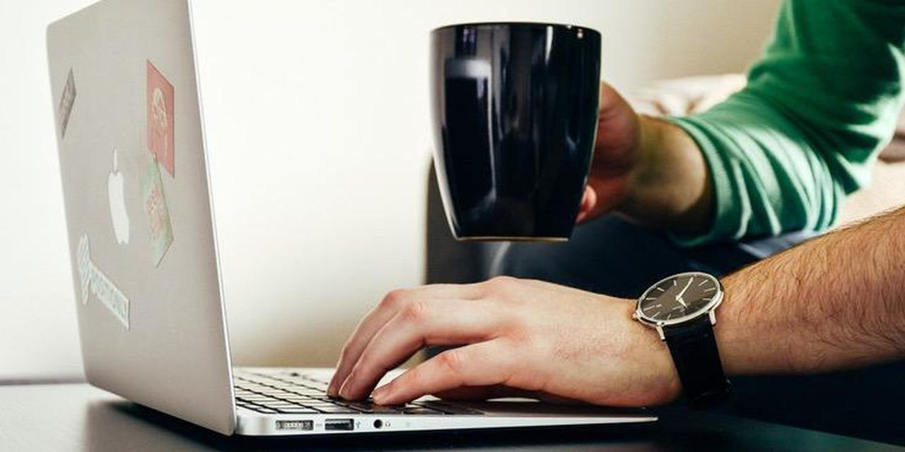 Ideas to Consider when Looking for the Best Content Writer