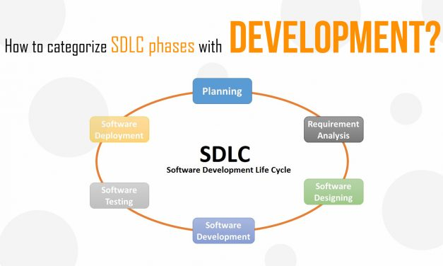 What Is a Software Development Life Cycle?