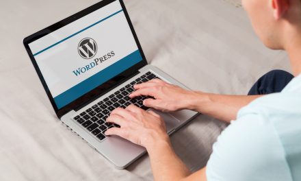 How You Can Find The Best WordPress Developer