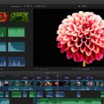 FlexClip Review: The Easiest Way for Creating Videos with Texts and Music